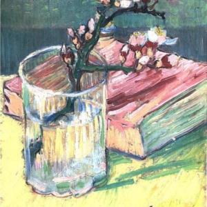 Awesome Blossom Branch In A Grass With A Book Painting Photo